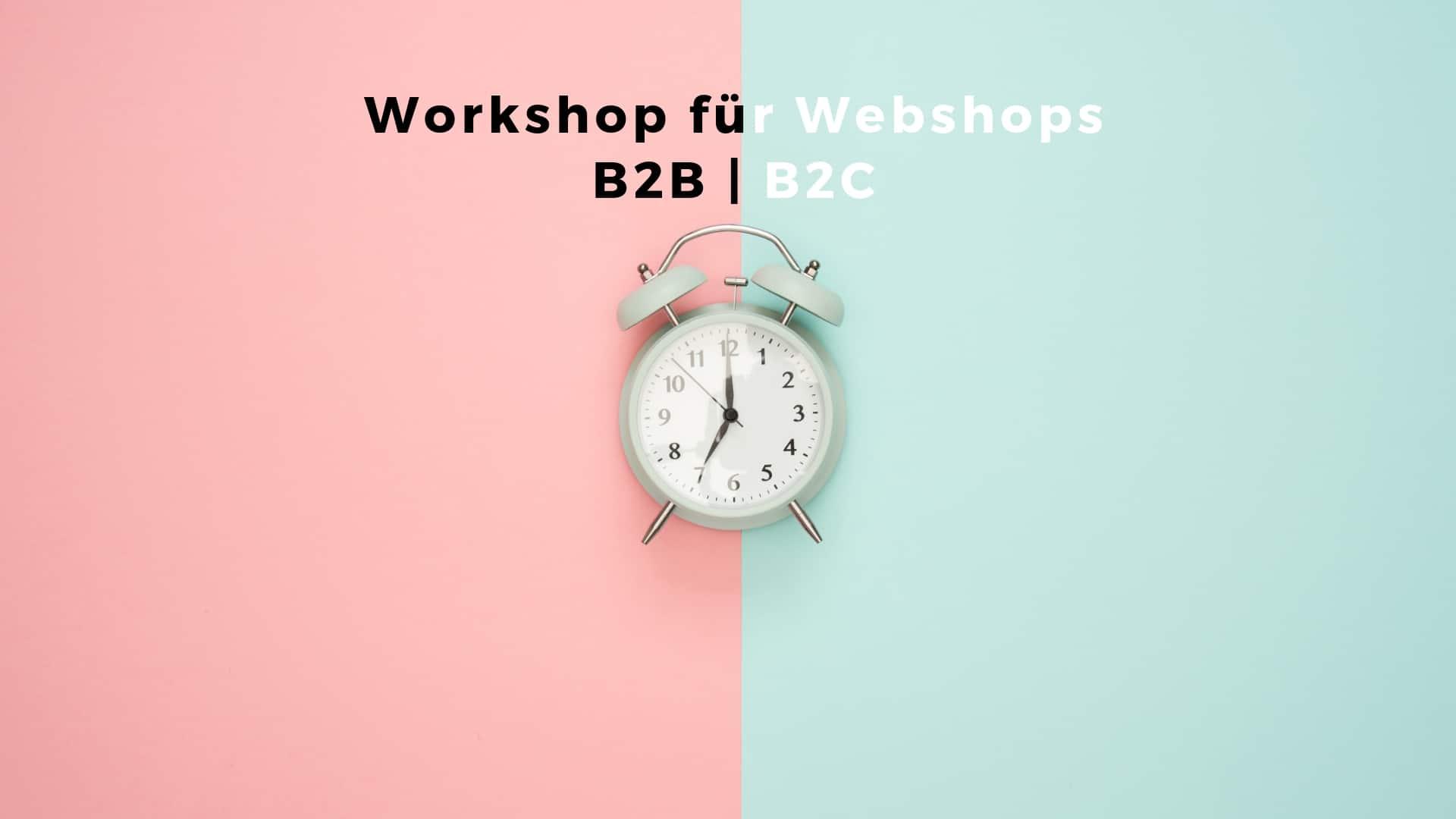 B2B oder B2C Webshop Workshop mit Mag. Thomas Neumeister aus Graz.