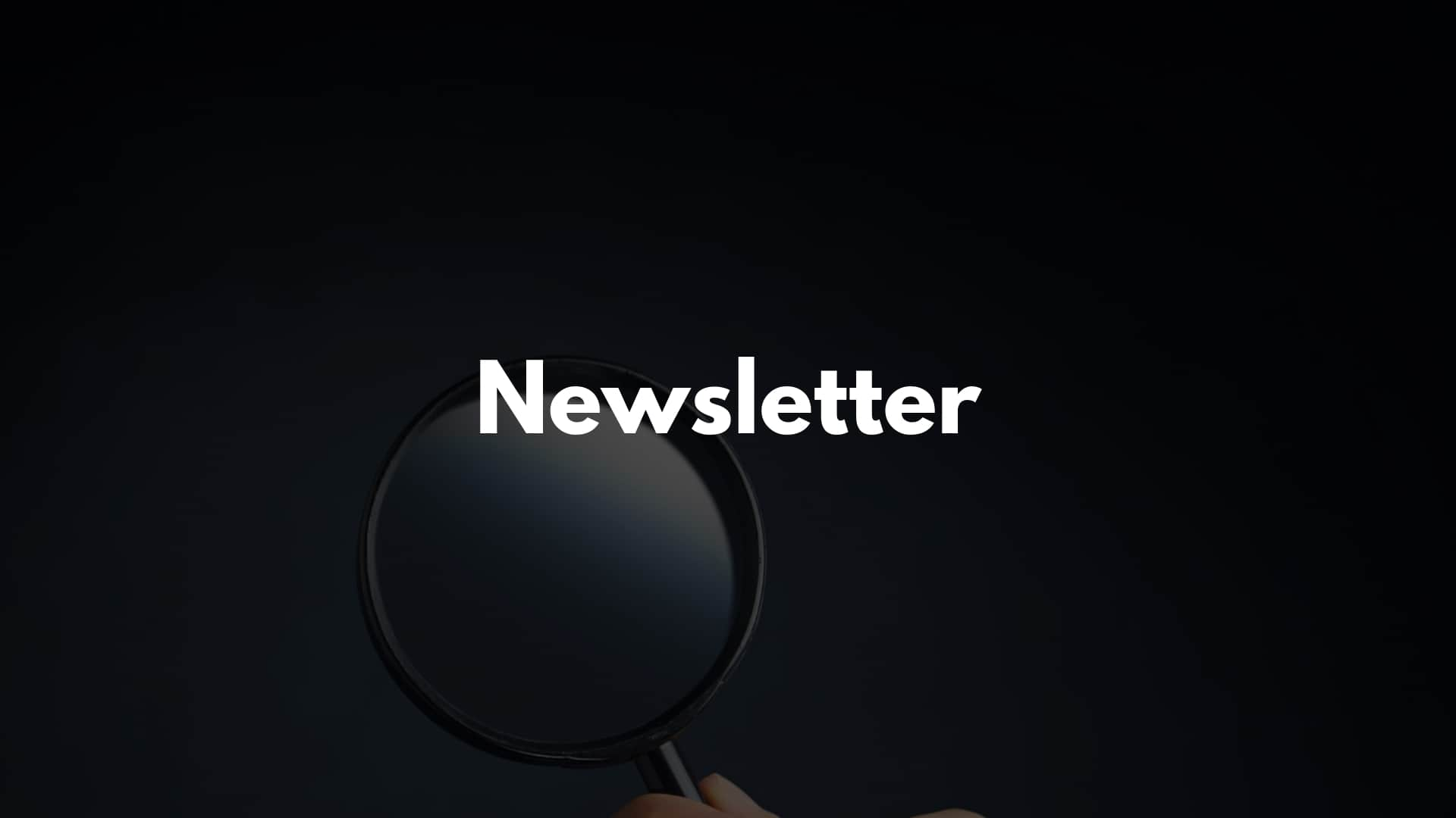 Newsletter Optimierung Review Audit