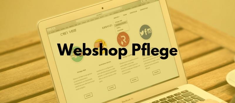 website-basics-pflege Schulung