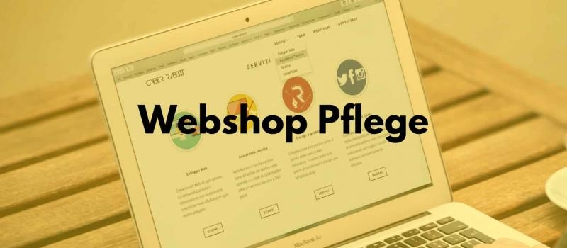 Spezielle Webshop Pflege Schulung von Mag. Thomas Neumeister.